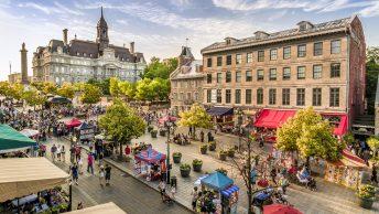 Ezra Cohen Montréal les meilleures activités à faire à montreal